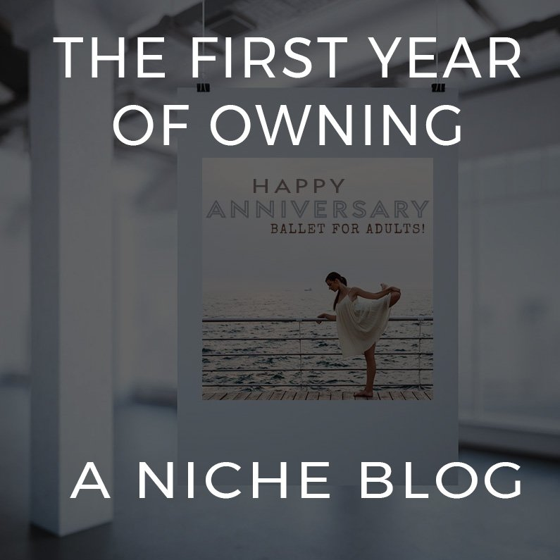 first year of owning a niche blog